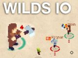 Wilds io