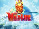 Boonie Bears The Wild Life