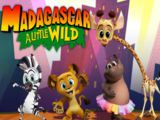 Madagascar A Little Wild