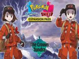 Pokémon Sword and Shield The Crown Tundra