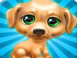 Popdog Click