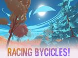 Racing Bycicles