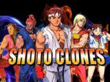 Shoto Fighting