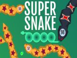 Super Snakeio