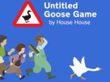 Untitled Goose
